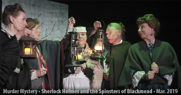 Sherlock Holmes and the Spinsters of Blackmead